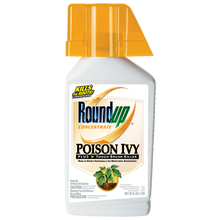Roundup® Concentrate Poison Ivy Plus Tough Brush Killer