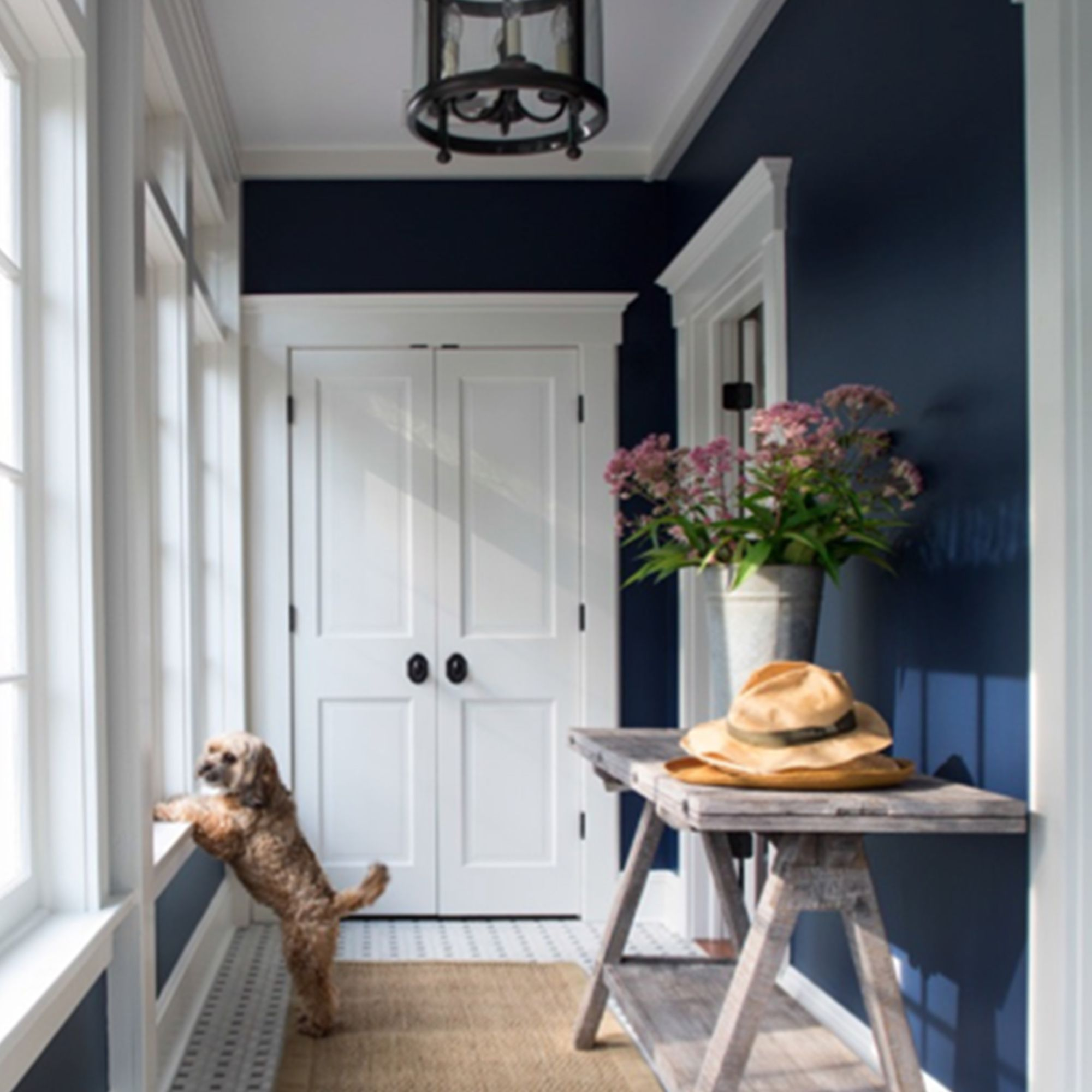 Mudroom painted with Aura